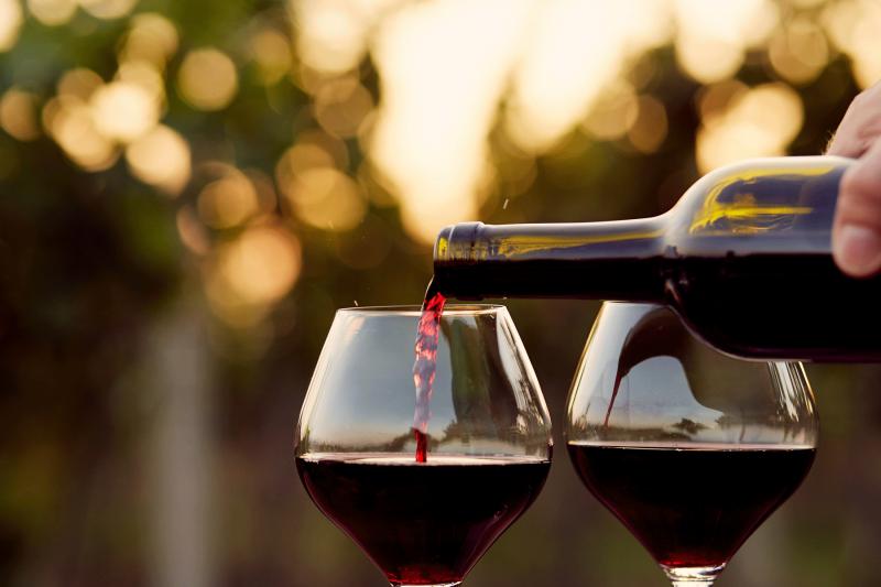 Digital-vinprovning-röda-viner-Maggio